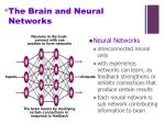 the brain and neural networks