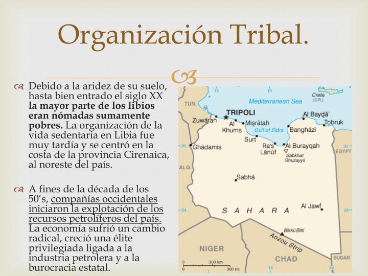 Organización Tribal.