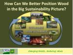 how can we better position wood in the big sustainability picture