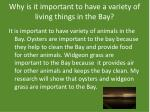 why is it important to have a variety of living things in the bay