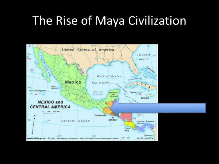 the rise of maya civilization n.
