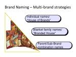 brand naming multi brand strategies