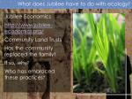 what does jubilee have to do with ecology1