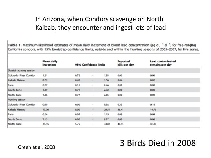 In Arizona, when Condors scavenge on North Kaibab, they encounter and ingest lots of lead