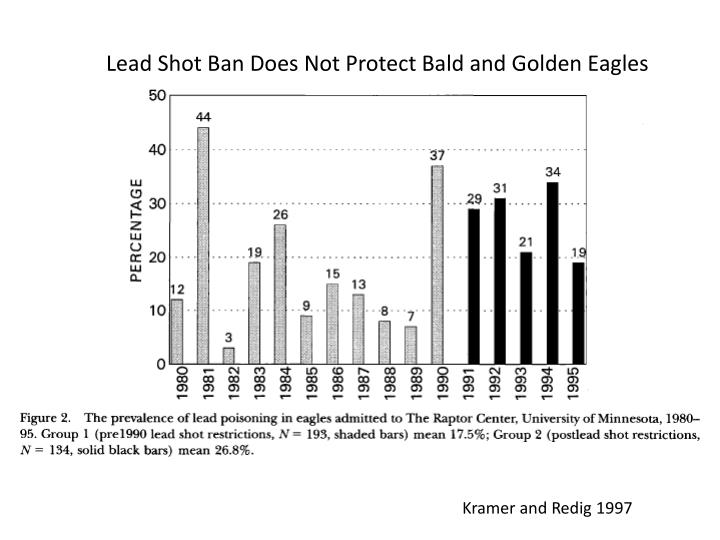 Lead Shot Ban Does Not Protect Bald and Golden Eagles
