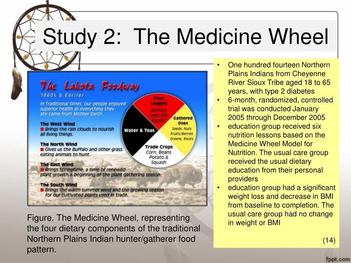 Study 2:  The Medicine Wheel