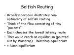 selfish routing2