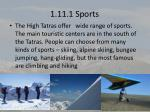 1 11 1 sports