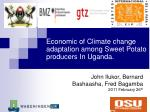 economic of climate change adaptation among sweet potato producers in uganda