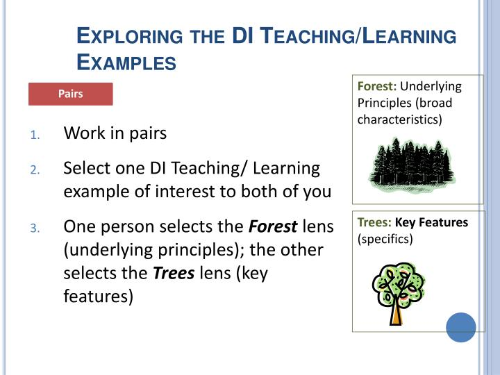 Exploring the DI Teaching/Learning Examples