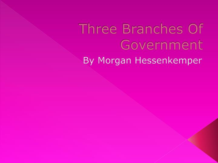 three branches of government n.
