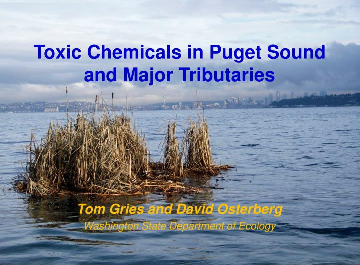toxic chemicals in puget sound and major tributaries n.