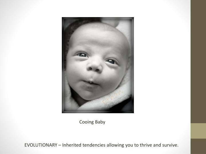Cooing Baby