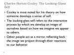 charles horton cooley the looking glass self