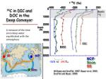 14 c in dic and doc in the deep conveyor