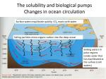 the solubility and biological pumps changes in ocean circulation