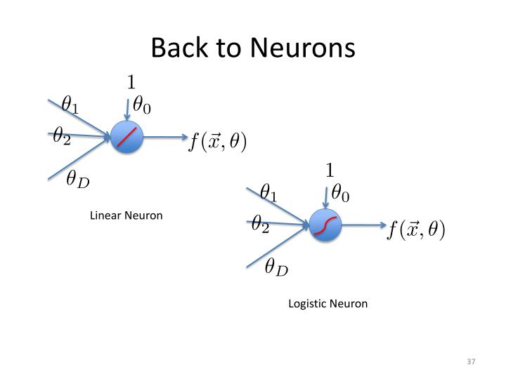 Back to Neurons