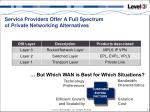 service providers offer a full spectrum of private networking alternatives