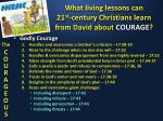 what living lessons can 21 st century christians learn from david about courage3