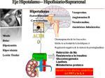 eje hipotalamo hipofisiario suprarrenal