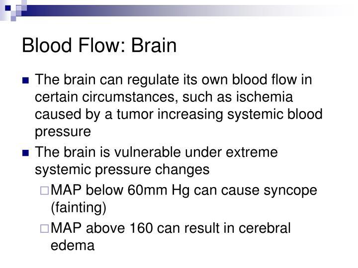 Blood Flow: Brain