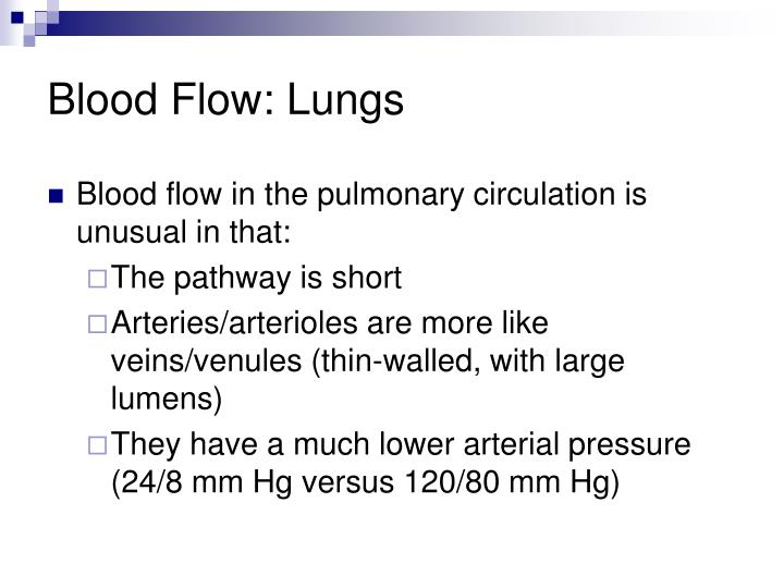 Blood Flow: Lungs