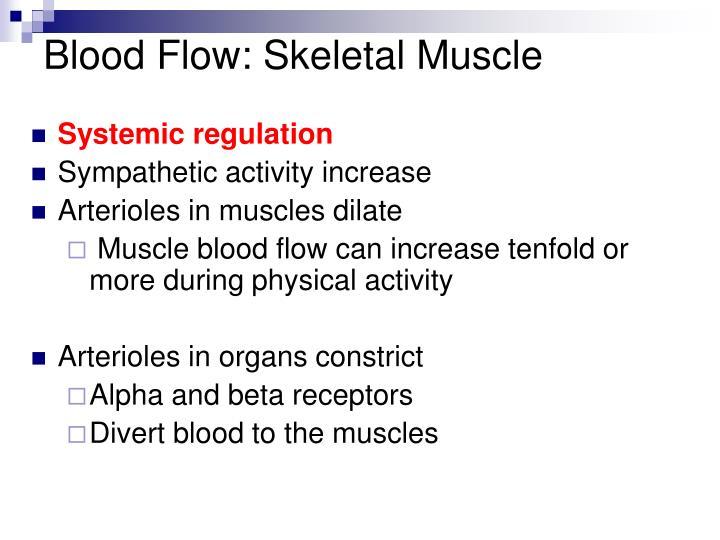 Blood Flow: Skeletal Muscle