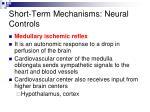 short term mechanisms neural controls8