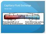capillary fluid exchange4