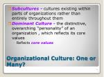 organizational culture one or many