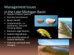 management issues in the lake michigan basin