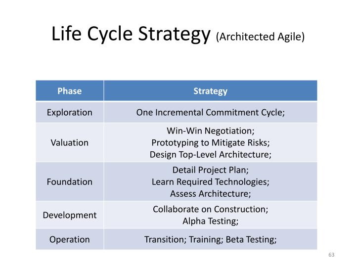 Life Cycle Strategy