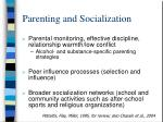 parenting and socialization