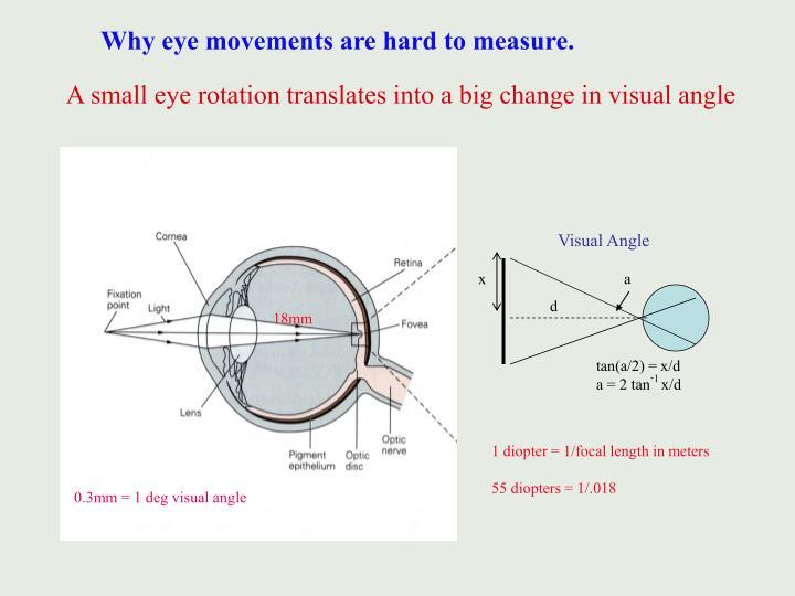 Visual Angle
