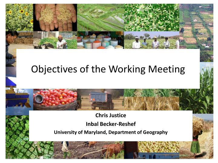 objectives of the working meeting n.
