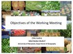 objectives of the working meeting