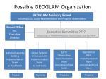 possible geoglam organization