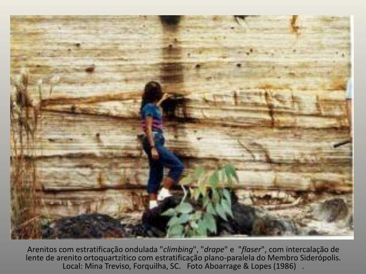 """Arenitoscom estratificação ondulada """""""