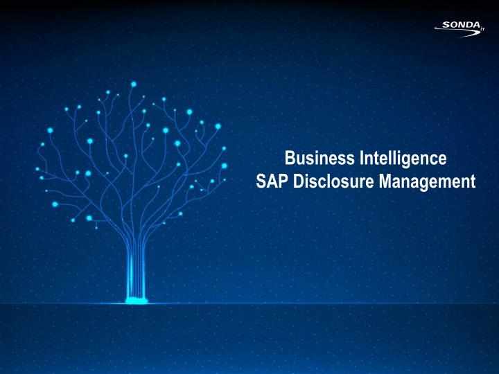 business intelligence sap disclosure management n.