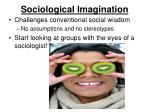 sociological imagination2