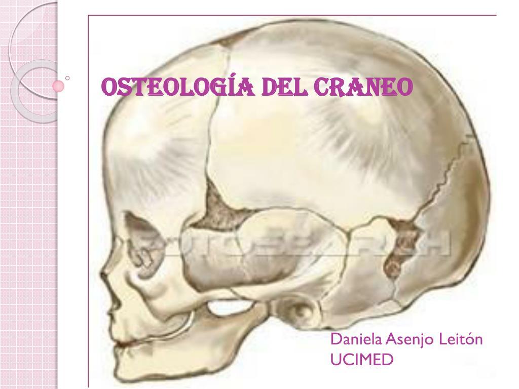 PPT - OSTEOLOGÍA DEL CRANEO PowerPoint Presentation - ID:2261801