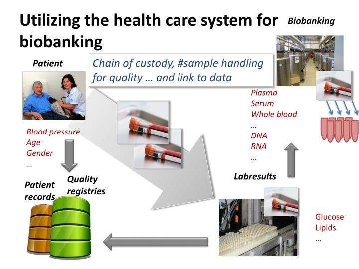 Utilizing the health care system for
