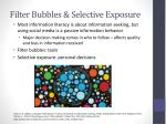 filter bubbles selective exposure