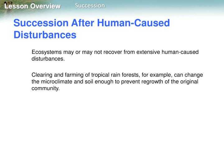 Succession After Human-Caused Disturbances