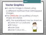 vector graphics1