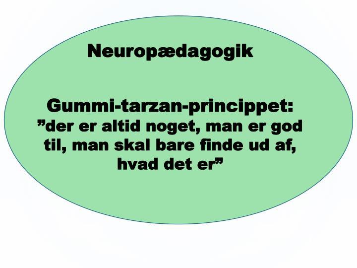 Neuropædagogik