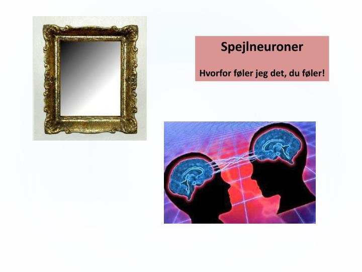 Spejlneuroner