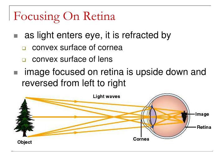 Focusing On Retina