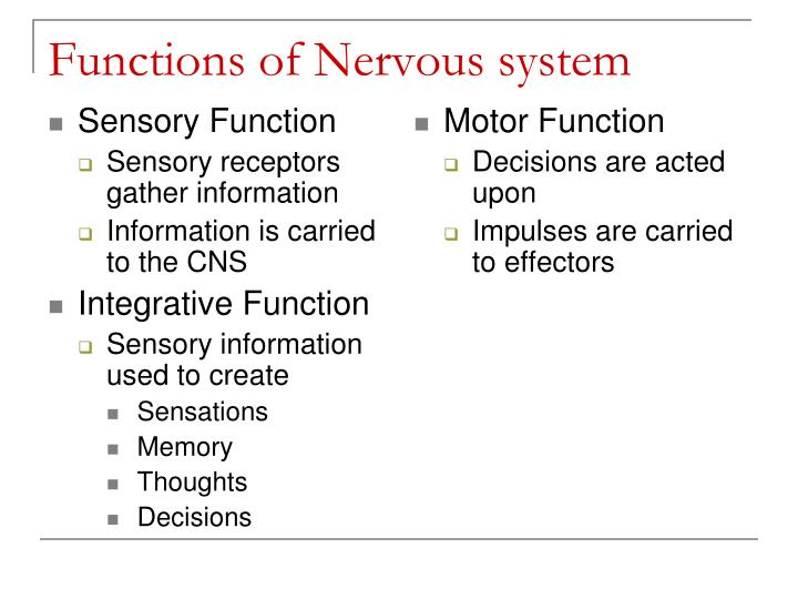 Sensory Function