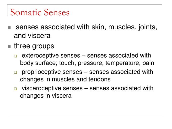 Somatic Senses